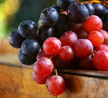 Grapes - Vertical by Dragos Dumitrascu