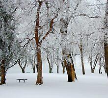Howard Amon Winter by Robin  Koster