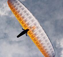 Sunlit Paraglider by Bel Menpes