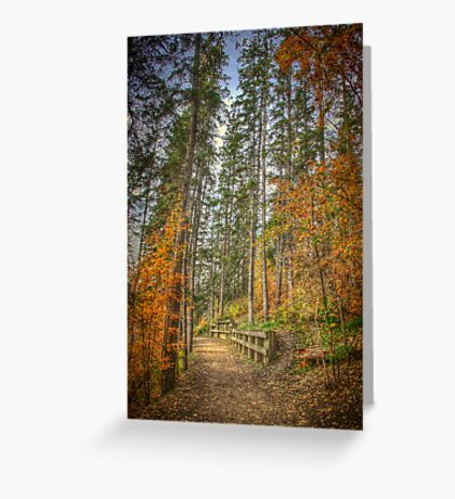 Path to Serenity Greeting Card
