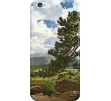 Rocky Mountain Summer iPhone Case/Skin