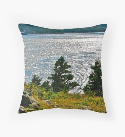 Petit Passage from Long Island Throw Pillow