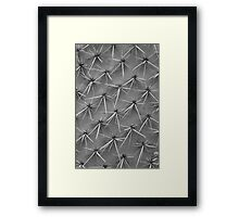 Cactus 5735 Framed Print