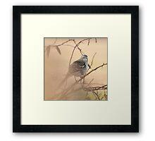 MOCKINGBIRD ON A FOGGY MORN Framed Print