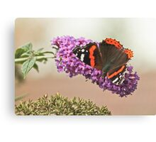 Autum Butterfly Canvas Print