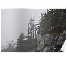 Foggy Mountain Morning Poster