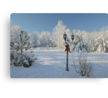 Winter Wonderland of White - Featured Photo & 1st Place Challenge Win! Canvas Print
