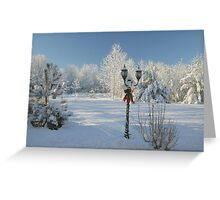 Winter Wonderland of White - Featured Photo & 1st Place Challenge Win! Greeting Card