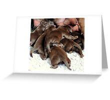 Morning chocolate Greeting Card