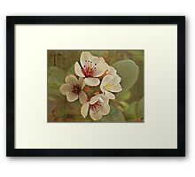 Textured Flowers Framed Print