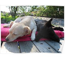 Sleeping buddies Poster