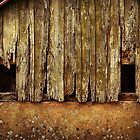 The Old Barn by Alexandra Lavizzari