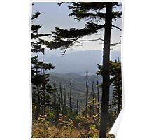 View From Clingmans Dome Poster