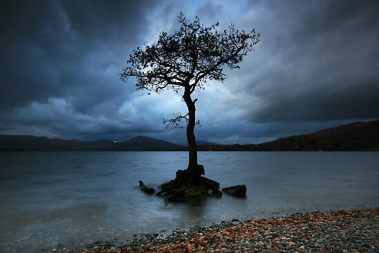 Scotland: Standing Alone by Angie Latham