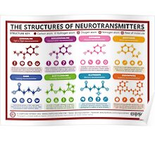 Chemical Structures of Neurotransmitters Poster