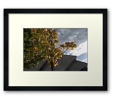 Storm clouds over the Armadillo Framed Print