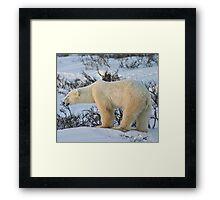Yoga Bear standing happy Framed Print