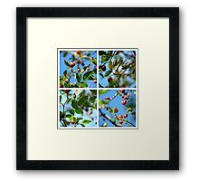 Rosehips - Polyptych Framed Print