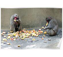 Monkeys fruit bar - Aapjes Fruit Bar Poster