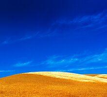 Yellow Waves of Grain by Jim Scolman