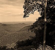Blue Ridge Mountains, Virginia by Frank Romeo