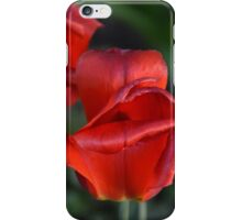 Red Tulip, #1 iPhone Case/Skin