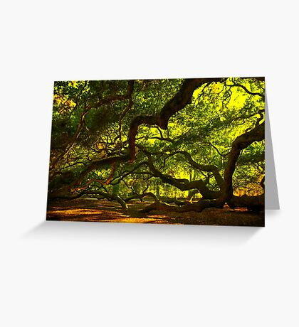Side arms of the Angel Oak in Charleston Greeting Card
