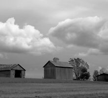 100510-19   A CLOUDY DAY by MICKSPIXPHOTOS