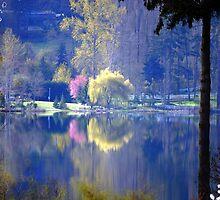 Quamichan Lake under a calm morning sun by Akana