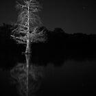 Alabaster Bayou by Cliff Worsham
