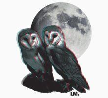 Owls 3D by LeedenMoon