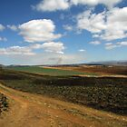 The Underberg by fortheloveofit