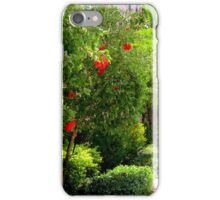 URBAN SIDEWALK iPhone Case/Skin