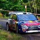 Citroen, WRC by Frederic Chastagnol