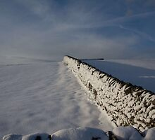 Wall of Snow by warrenelkes