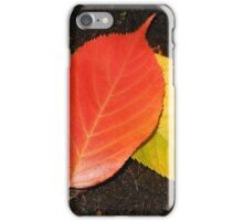 Linden Leaves in the Lamplight iPhone Case/Skin