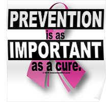Prevention is as Important as a Cure Poster