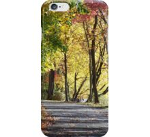 Rockland Lake Path, Autumn iPhone Case/Skin