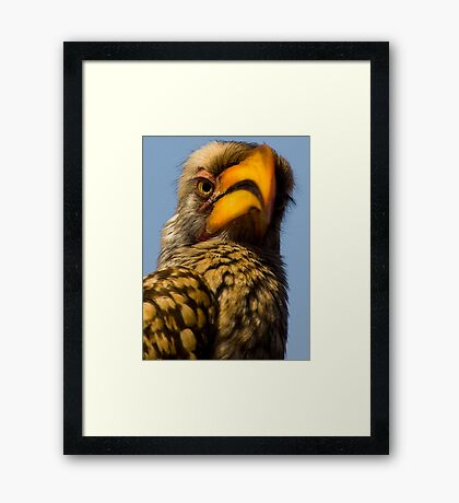 Wise man 1 Framed Print