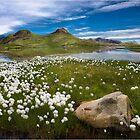 Estaris Lake by Philippe Albanel