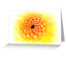 Yellow Dhalia Greeting Card