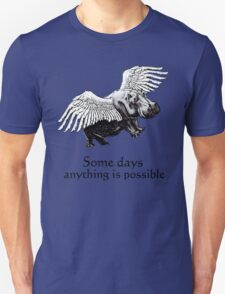 Some Days .. (colour version) T-Shirt