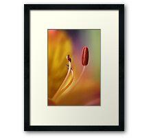)) ) Framed Print