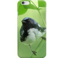 Black-throated Blue Warbler iPhone Case/Skin