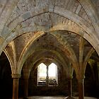 Ancient Arches by Emma Williams