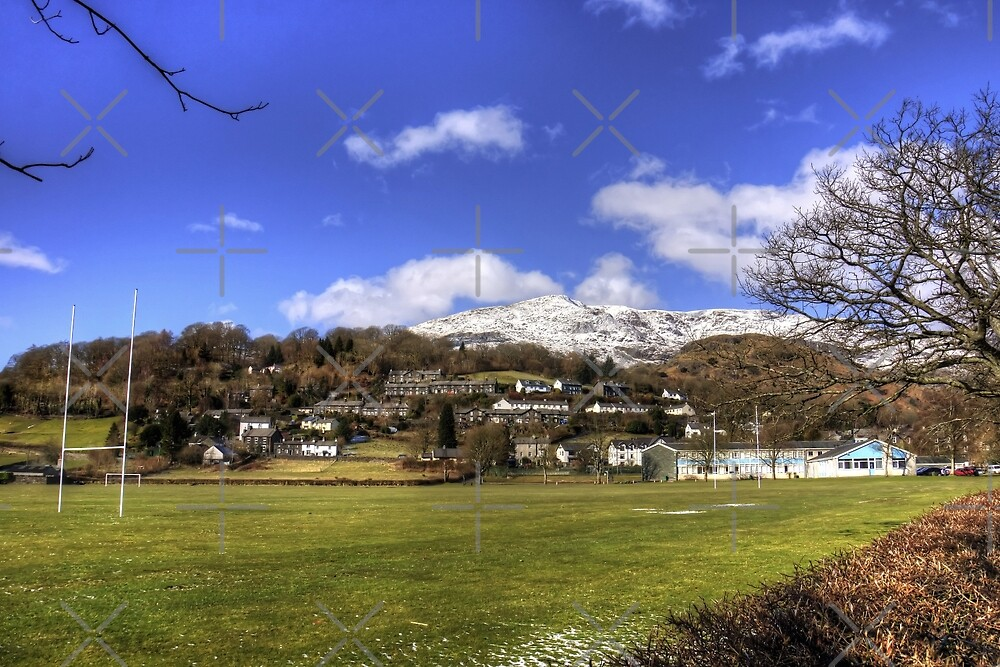 Playing Fields of Coniston by Tom Gomez