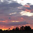 Beautiful Sky by treolson