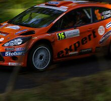 Ford WRC, Rally of France 2010 by Frederic Chastagnol