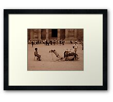 Staring Competition  Framed Print