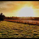 sunset  by brett watson